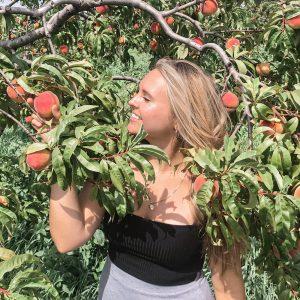 Niagara Peaches